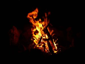 firebyforest