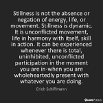 stillness-schiffman