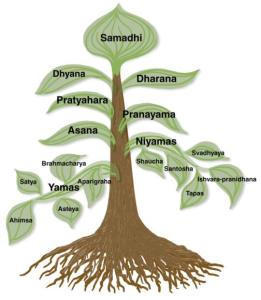8limbsofyoga-tree